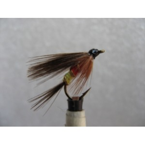 Dry Black Ant Winged Size 14