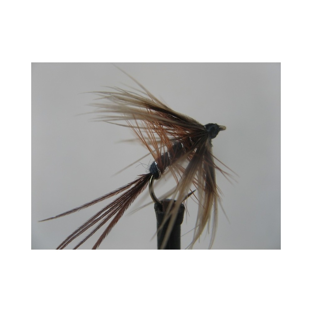 Dry French Partridge size 12