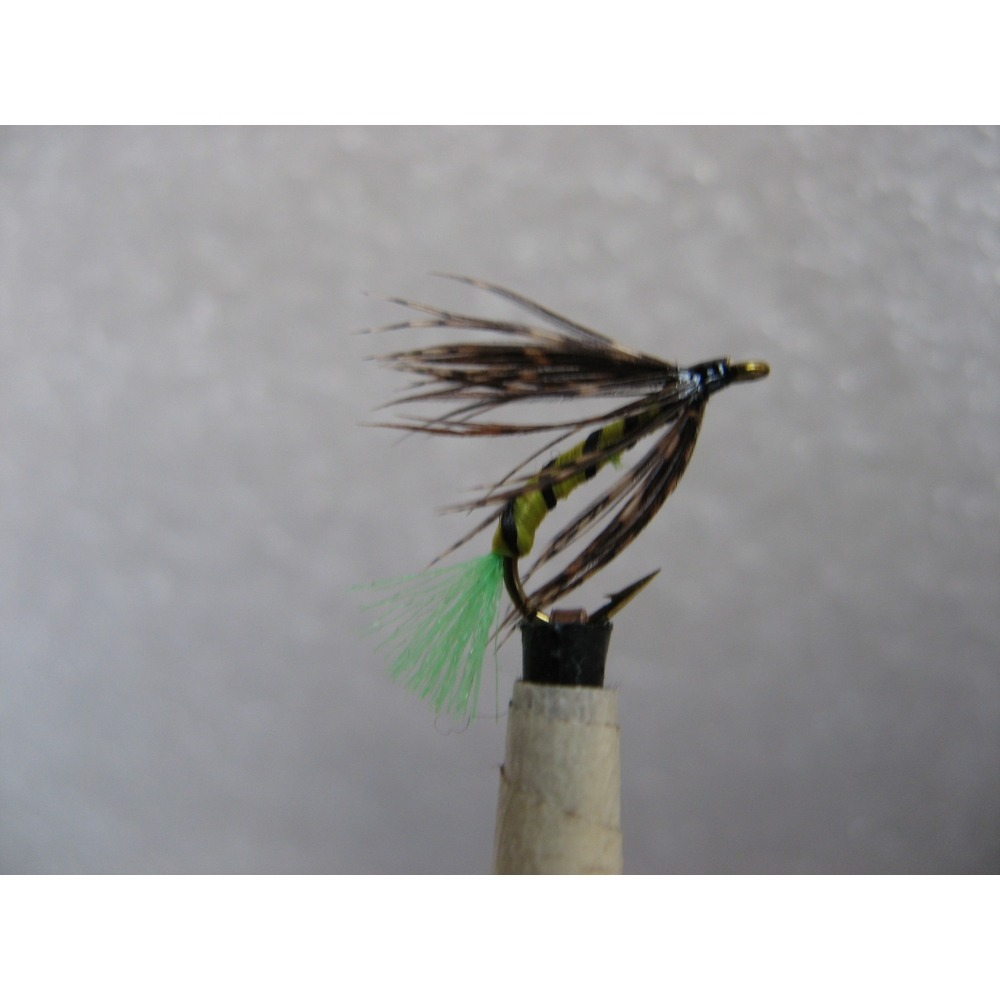 Wet Ossies Owl Size 12