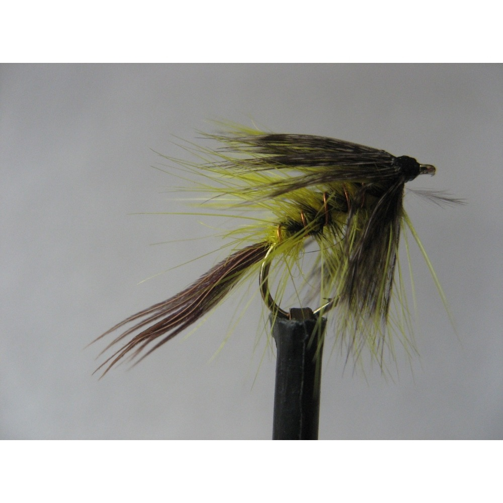 Golden Olive Dabbler