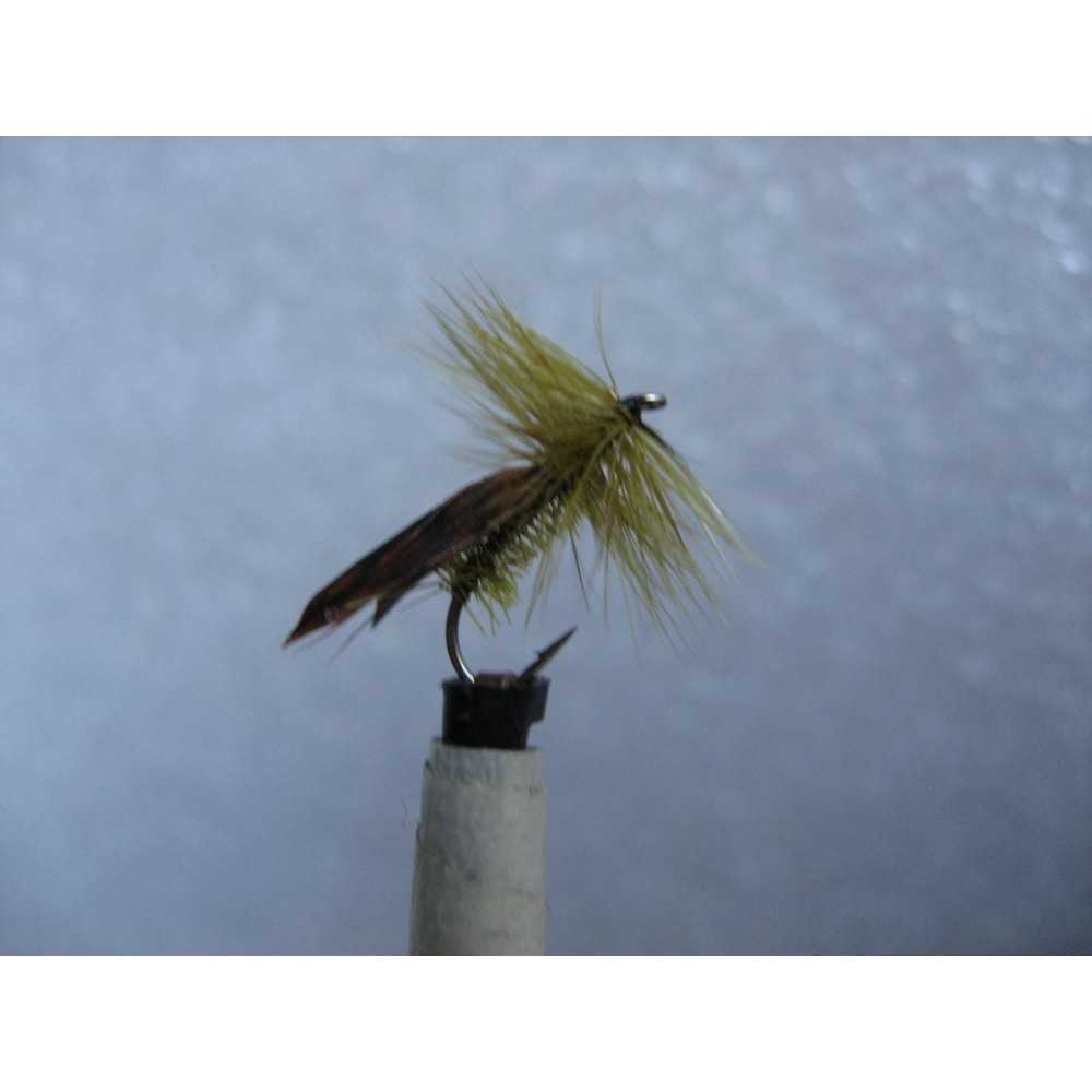 Sedge Tape Wing Caddis Olive Size 14