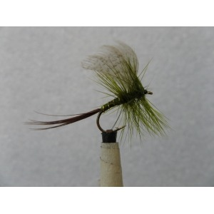 Carron Rabbit Size 10