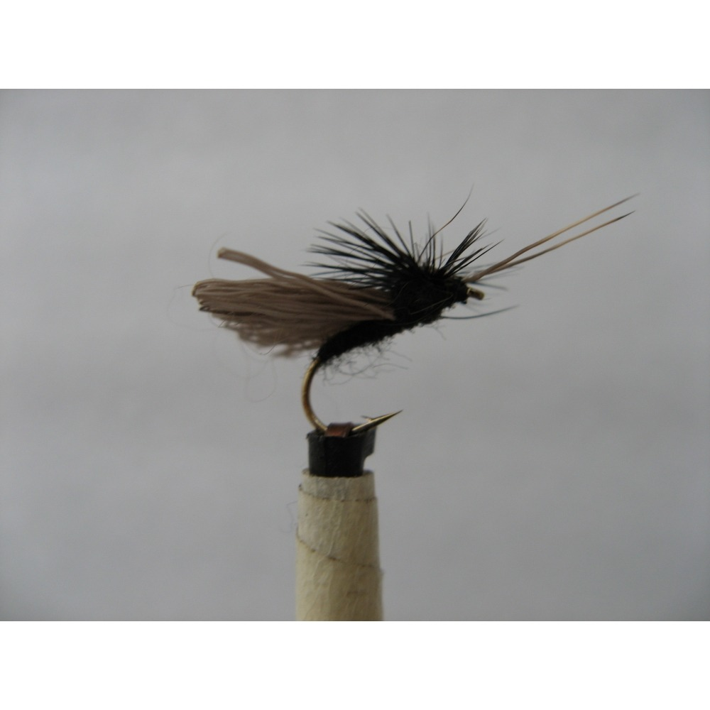 Sedge Devils Caddis Black