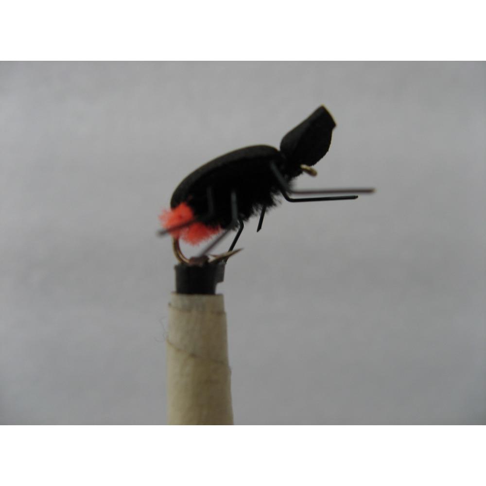 Foam Beetle Black Orange Butt