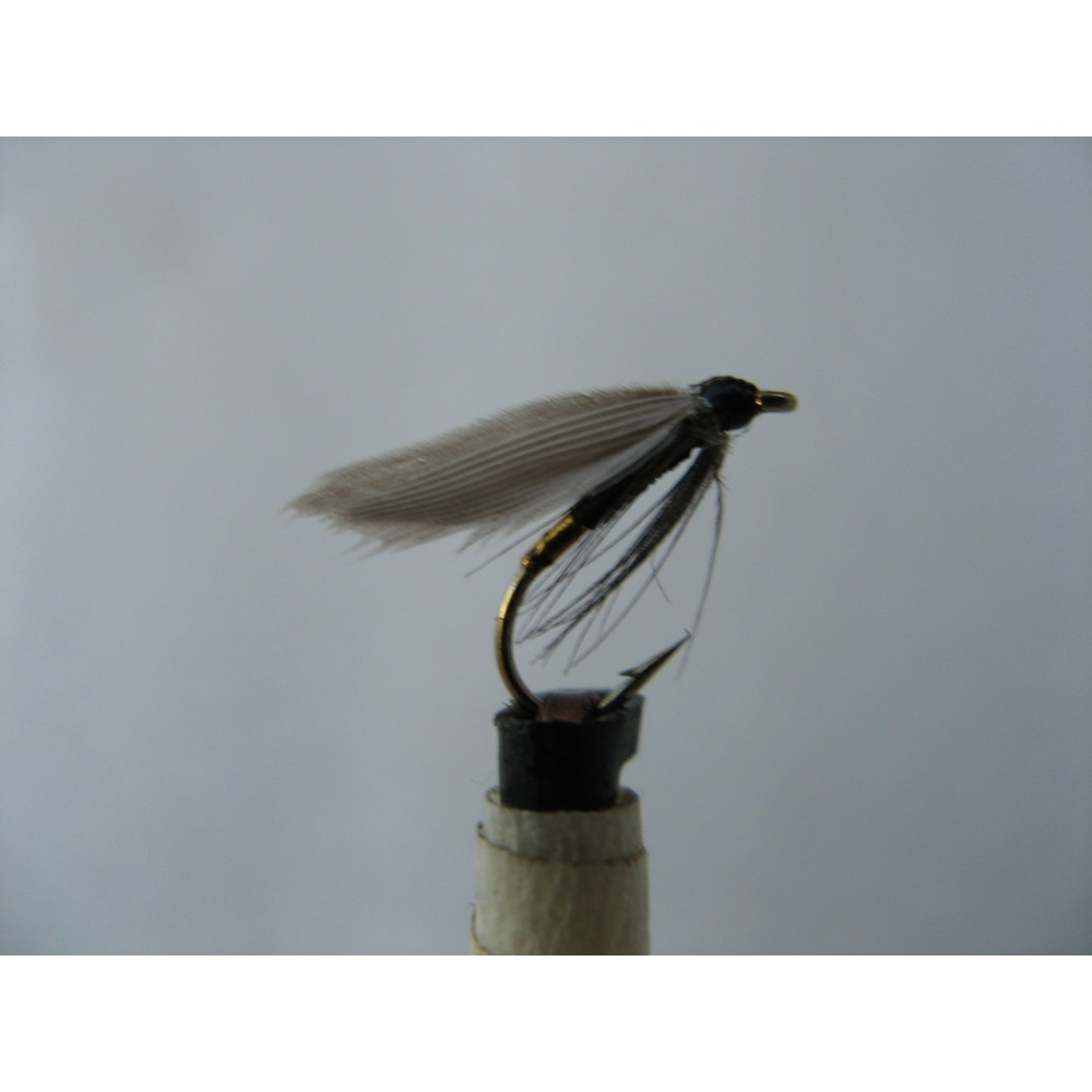 Winged Spider Black Gold Butt Size 14