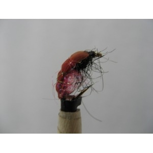 Glister Bug Size 12