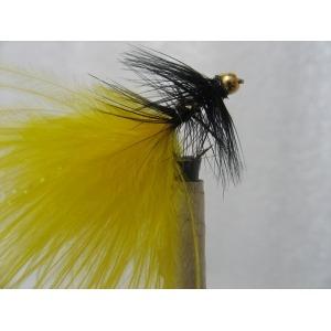 B/W Northern Yellow Size 10