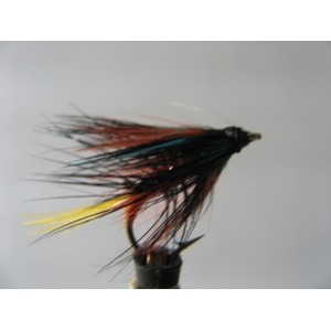 Epoxy Shrimp Red size 12