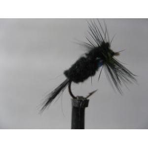 Tasmanian Devil Ladybird 13.5gm