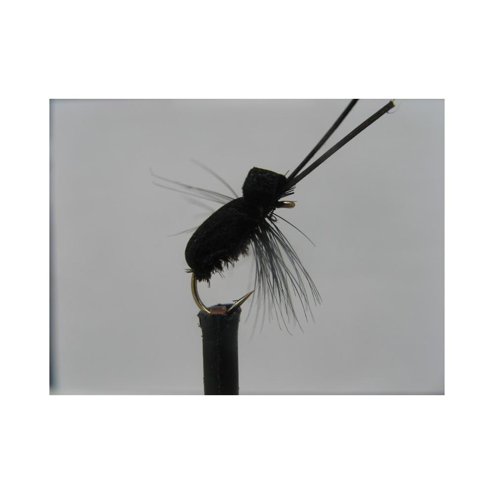 Foam Beetle Black