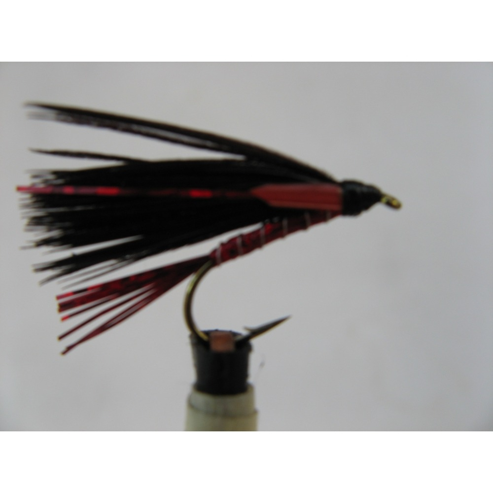 Cormorant Holo Red Size 10