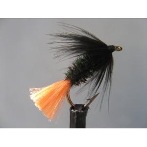 Variant Black & Peacock Spider