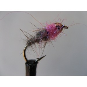 Shrimp Hares Ear Pearly Size 10