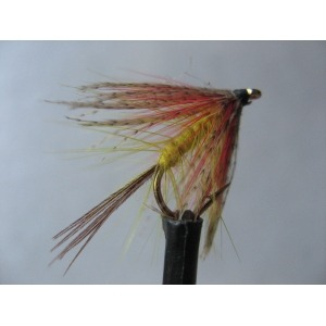 Cruncher Yellow Owl Size 12