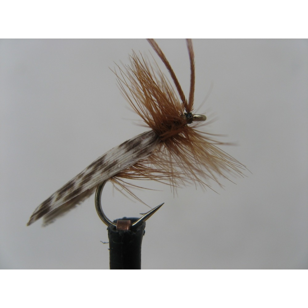 Sedge Light Brown