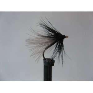 Black Gnat CDC Spider Size 14