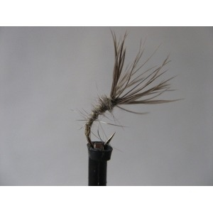 Ians Copper King Damsel Size 10