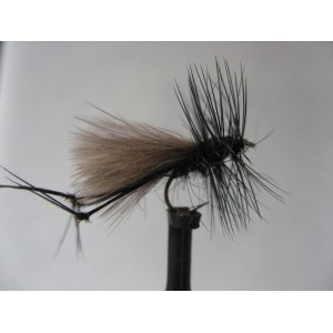 Hothead Green Cats Whisker Size 10 L/S