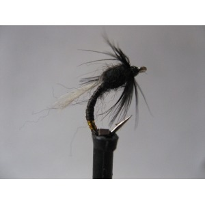 Selection Sedges Size 12