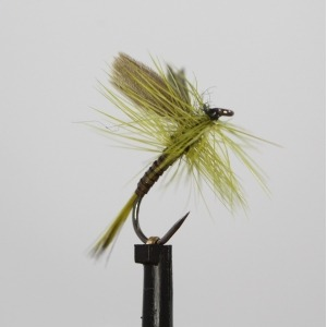 Olive Quill Dry Barbless Size 12