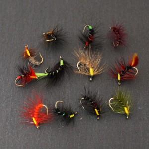 Snatcher Selection - Size 12