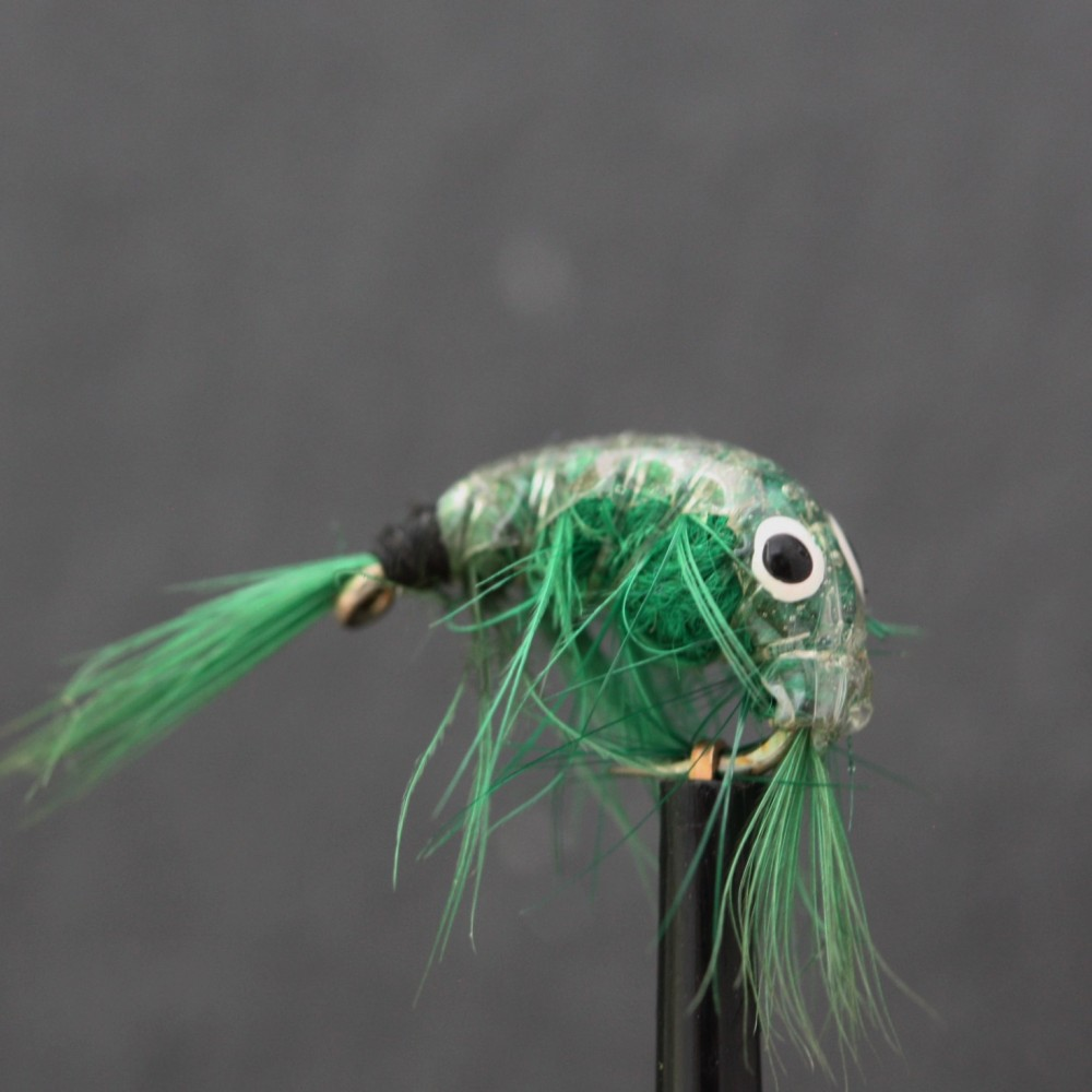 Dark Green Epoxy Shrimp