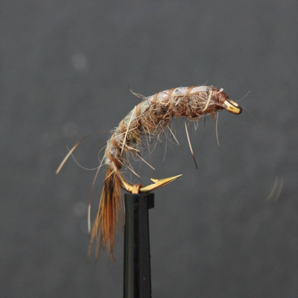 Weighted Hares Ear Tailed Shrimp