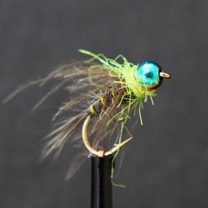 Glister Collar Bug, Picric...