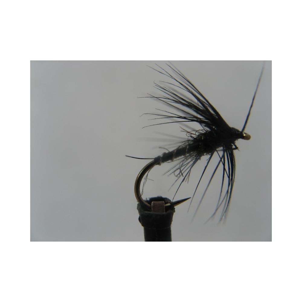 Spider Black Brite Size 12