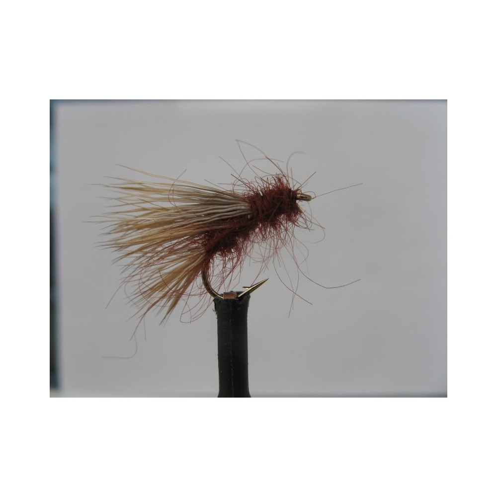 Sedgehog Fiery Brown Size 10