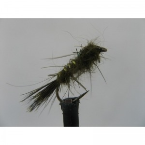 Cruncher Standard Holo Red Cheeks Size 12
