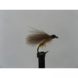 Sedge G & H Orange