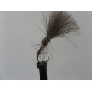 Sedge Fluttering Size 12