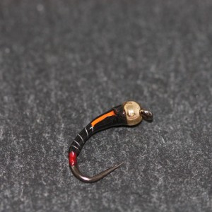 Cats Lead Bug Size 10