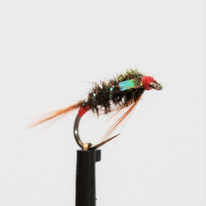 Pearl Red Butt Diawl Bach -...