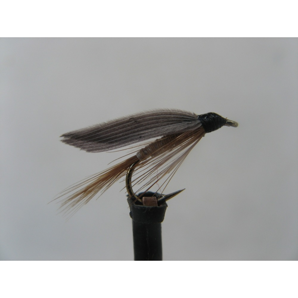 Wet Ginger Quill Size 12