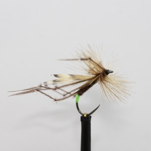BARBLESS Daddylonglegs - trout dry fly size 10 ref BL59 6 No Daddy