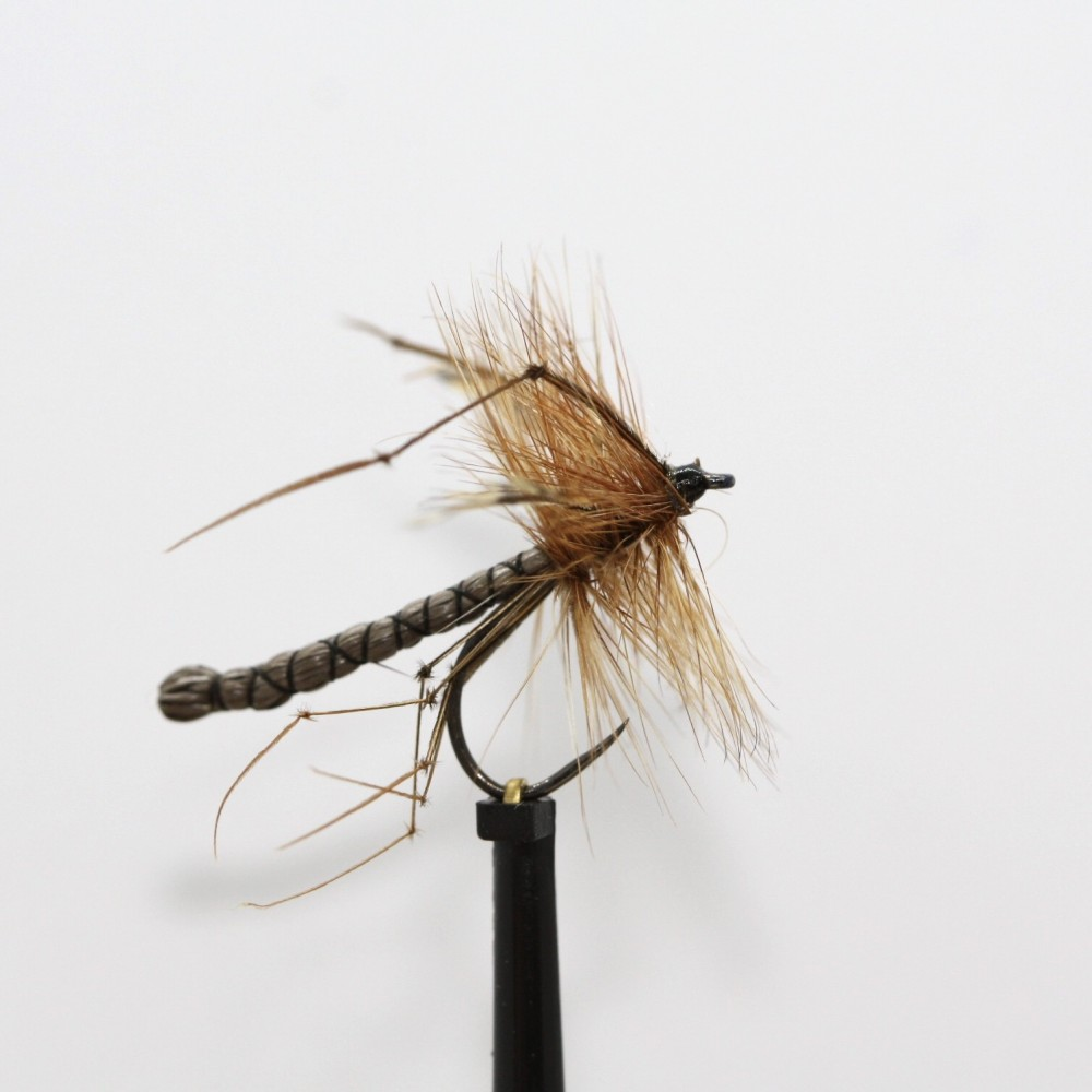 Detached Standard Daddy Barbless