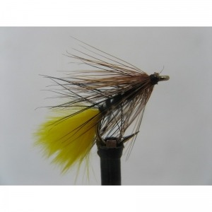 CDC F Fly Brown Size 14