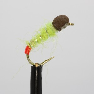 Ians Orange Pearly Booby Size 10