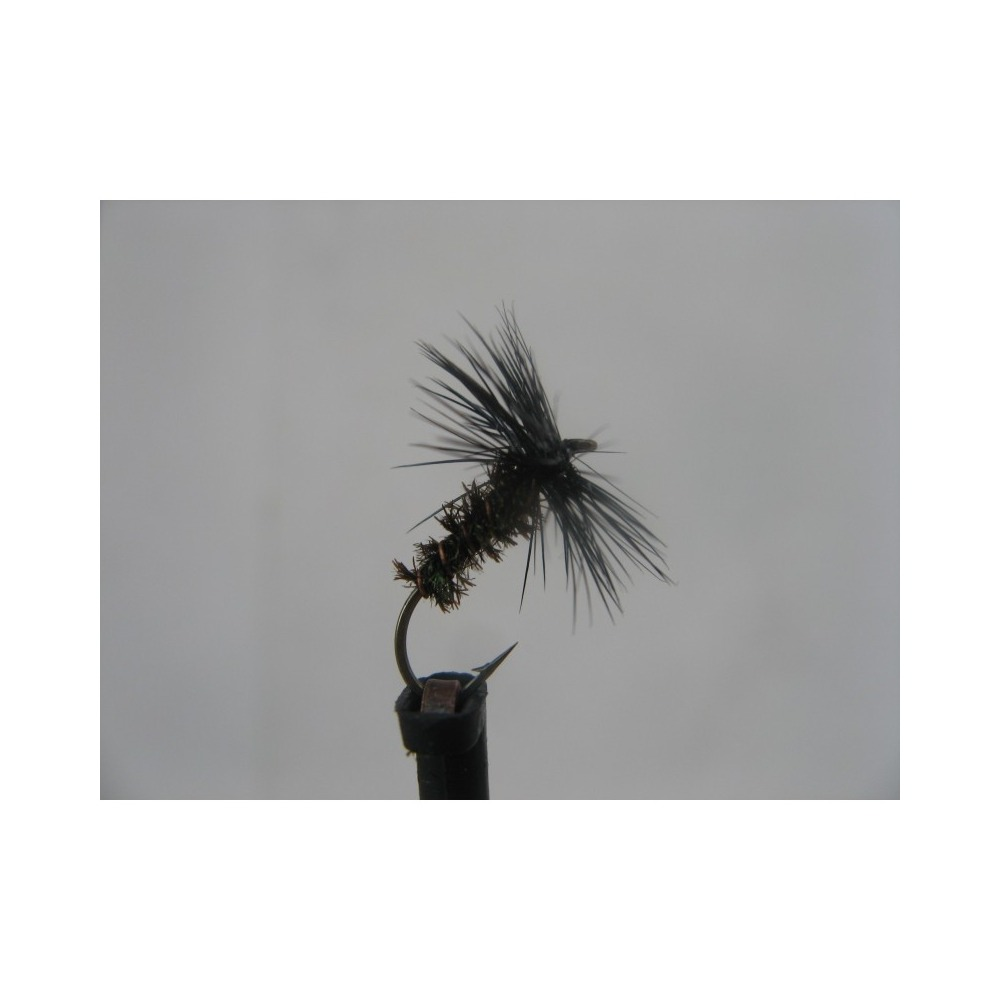 Dry Black & Peacock Spider Size 14