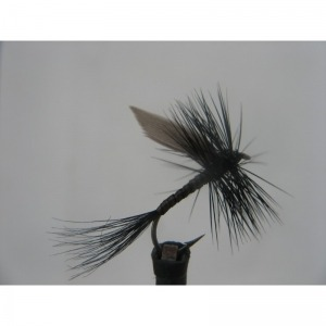 Dry Black Quill Size 14