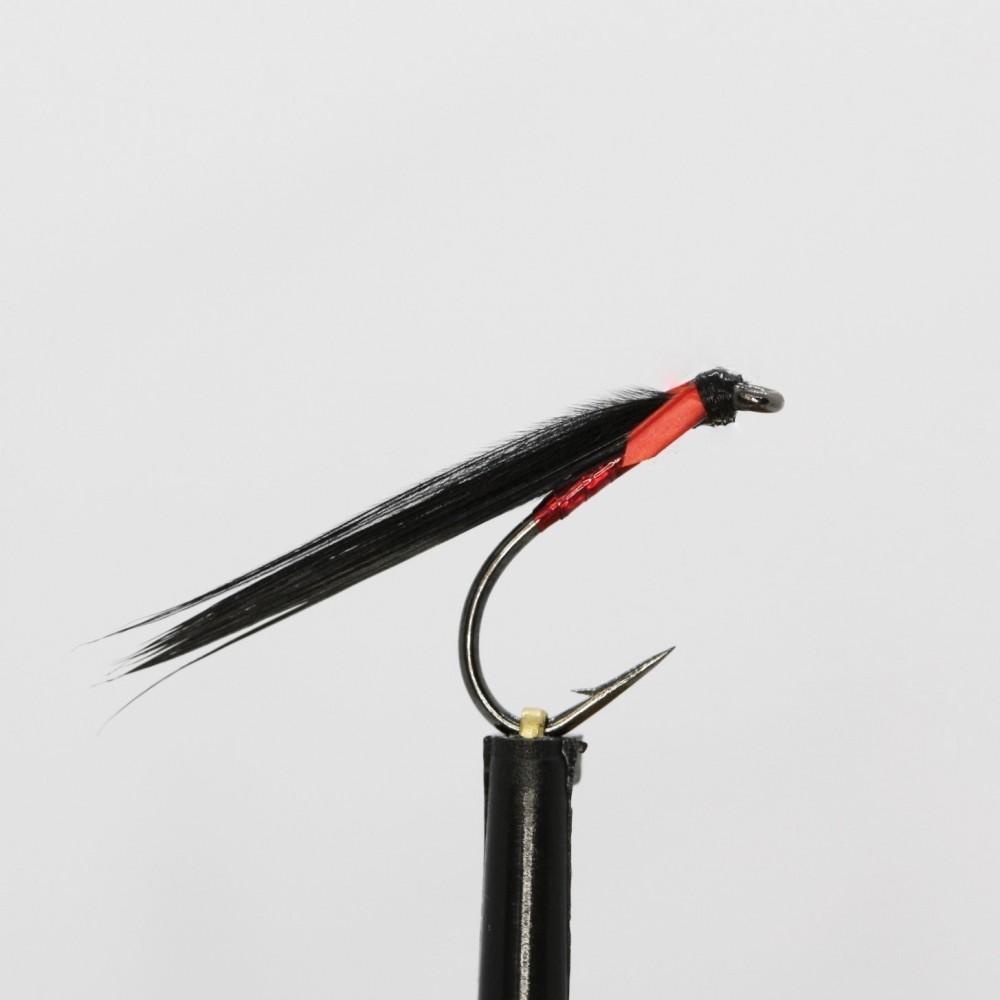 Skinny Red Cormorant