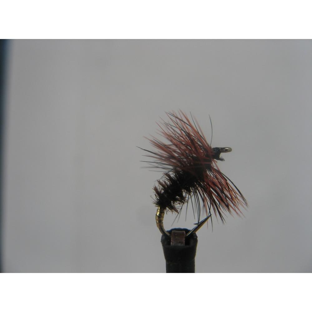 Dry Coch-Y-Bondhu Size 14