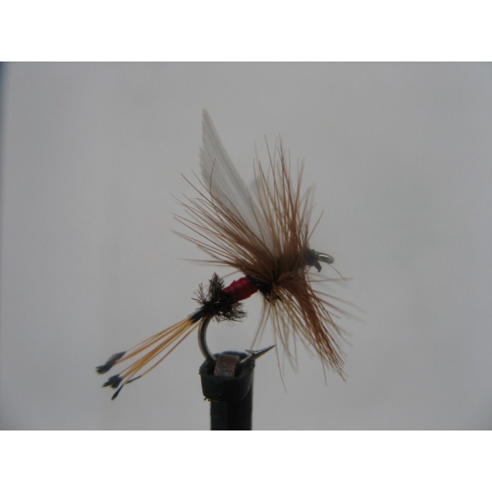 Dry Royal Coachman Size 14