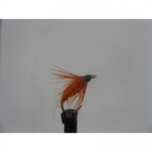 Dry Carrot Fly Size 14