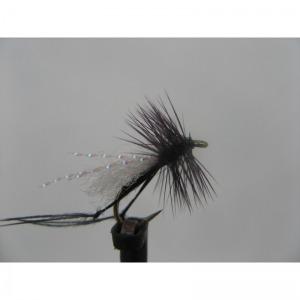 Dry Hawthorn Size 14