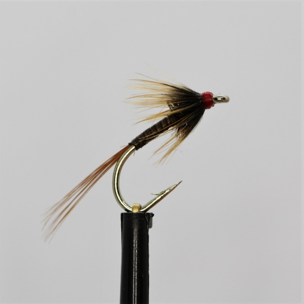 Standard Quill, Red Head Cruncher