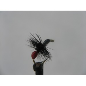 Dry Hard Body Red Ant Size 14
