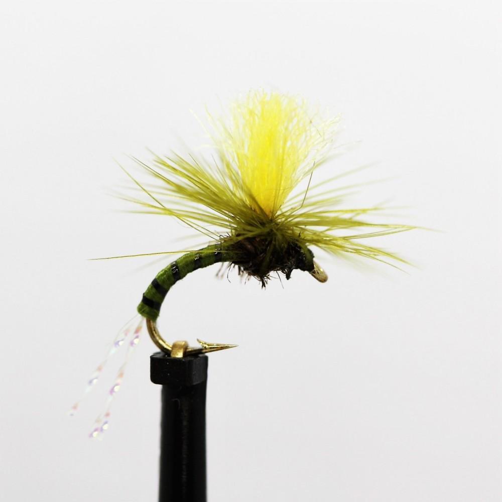 Olive Klinkhammer